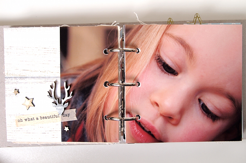 December Mini-Album by Els Brigé for A Flair For Buttons